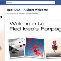 Why You Need a Facebook Fan Page…